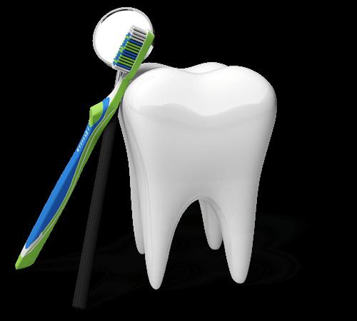 stomatolog legnica